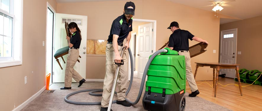 Seattle, WA cleaning services